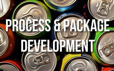 Director – Process Development (Consultant Role)
